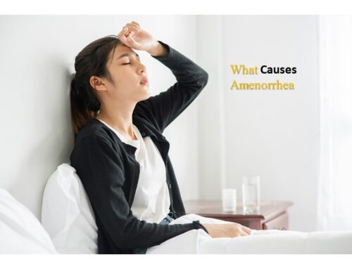 Amenorrhea (Absence of Period or Menstruation)